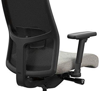 Adjustable Lumbar Support - Hon Ignition 2 Ergonomic Office Chair