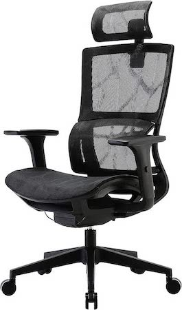 Xuer Ergonomic Computer Desk Chair - Best Office Chair for Lower Back Pain