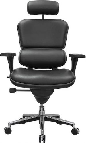 Ergohuman High Back Chair