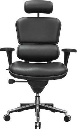 Eurotech Ergohuman High Back Office Chair For Lower Back Pain